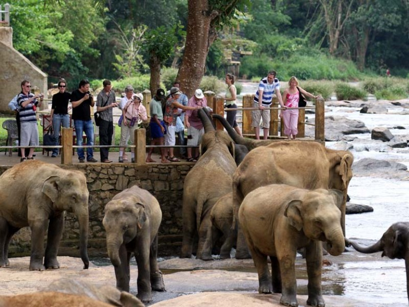 5 Days 4 Nights In Sri Lanka - Sri Lanka Tour Package 1