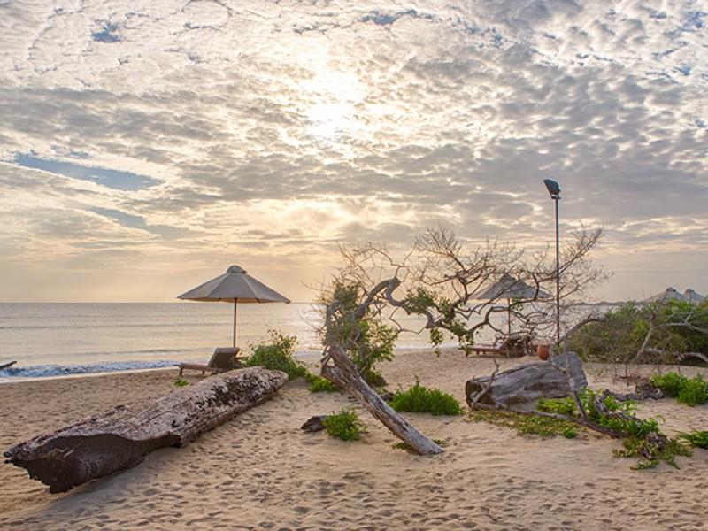 Sri Lanka Honeymoon Tour Package - 6 Days 5 Nights 4