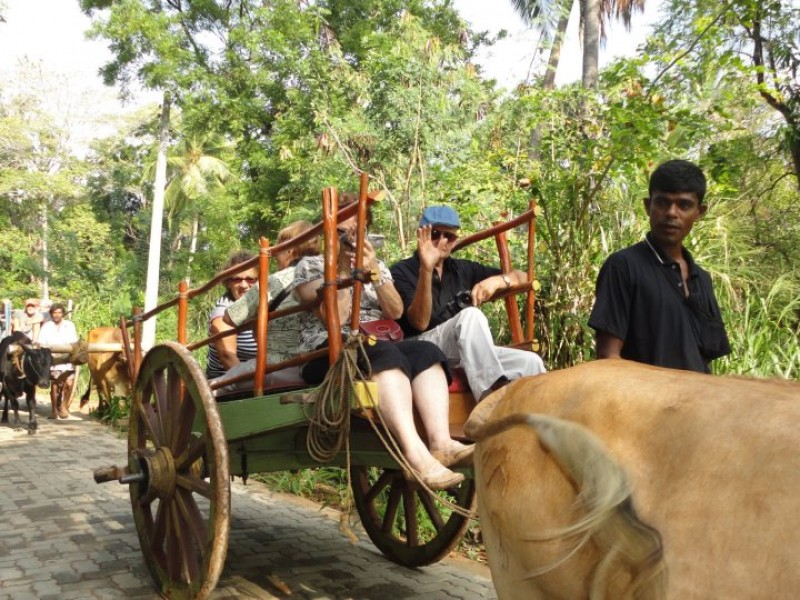15 Days Adventure Experience in Sri Lanka 2