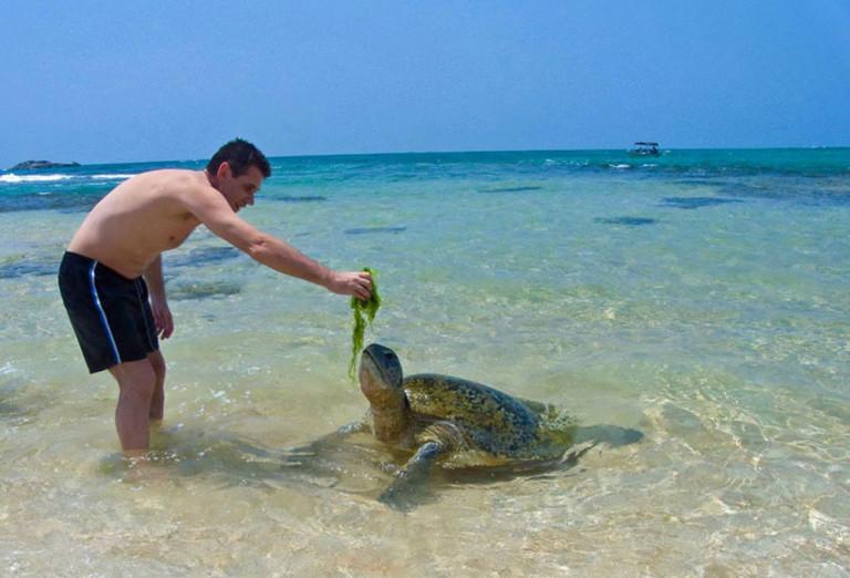 7 Days 6 Nights in Sri Lanka - Sri Lanka Tour Package 8