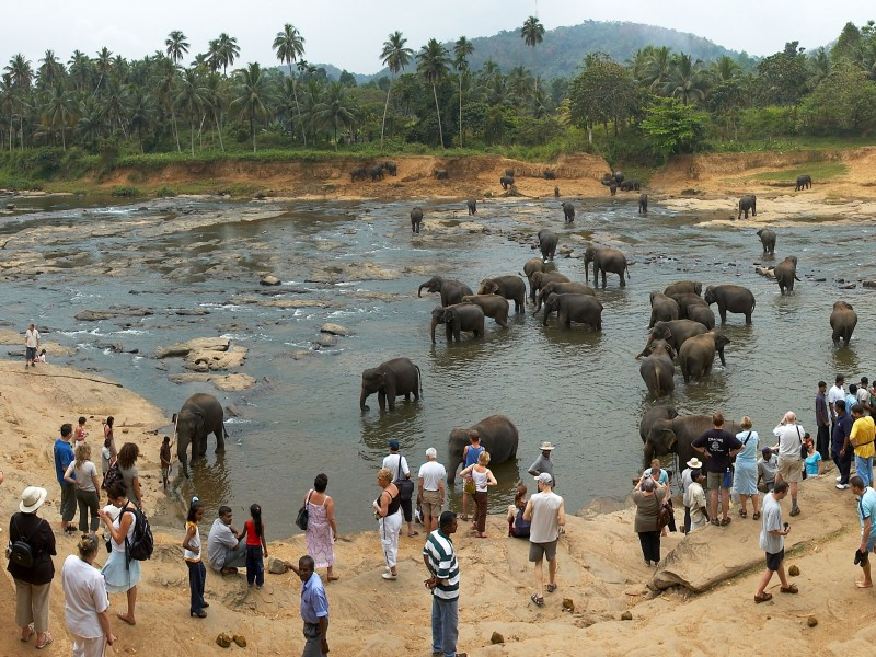 5 Days 4 Nights In Sri Lanka - Sri Lanka Tour Package 3